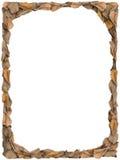 Beira das folhas de outono no fundo branco Fotos de Stock Royalty Free