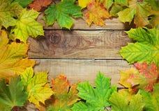 Beira das folhas de outono no fundo rústico Imagens de Stock