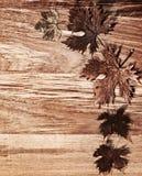 Beira das folhas de outono sobre o fundo de madeira Fotografia de Stock