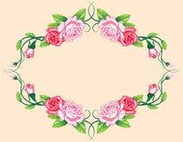 Beira das rosas do vetor Imagens de Stock