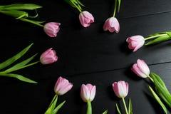 A beira das tulipas cor-de-rosa brilhantes floresce no fundo de madeira preto Foto de Stock Royalty Free