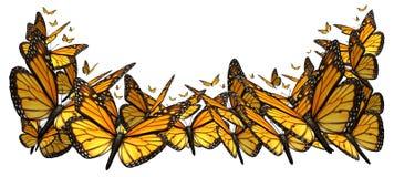 Beira de Buttefly ilustração do vetor