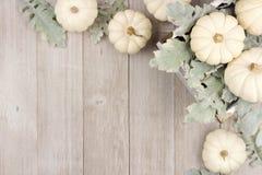A beira de canto das abóboras e da prata brancas sae sobre a madeira cinzenta Fotografia de Stock