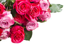 Beira de flores cor-de-rosa Fotografia de Stock Royalty Free