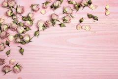 Beira de flores cor-de-rosa no fundo de madeira cor-de-rosa com cópia s Fotografia de Stock