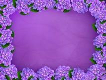 Beira de florescência ilustração stock