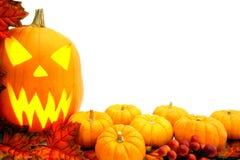 Beira de Halloween Fotografia de Stock