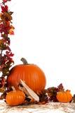 Beira de tamanhos Assorted das abóboras no feno Imagem de Stock Royalty Free