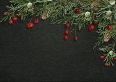 Beira decorativa do Natal com ramos do abeto e as bagas vermelhas sobre Imagens de Stock Royalty Free