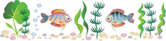 Beira do aquário Imagens de Stock Royalty Free