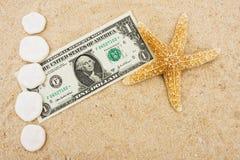 Beira do dólar de areia Fotografia de Stock