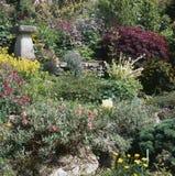 Beira do jardim do verão Fotos de Stock Royalty Free