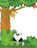 Beira do jardim zoológico Fotografia de Stock