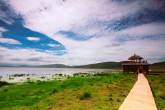 Beira do lago Fotografia de Stock Royalty Free