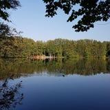 Beira do lago no outono em Alemanha Imagem de Stock Royalty Free