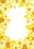 Beira do narciso amarelo Foto de Stock