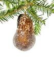 Beira do Natal com árvore de pinho e bauble Fotos de Stock Royalty Free