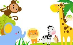 Beira dos animais da selva do divertimento Imagem de Stock Royalty Free