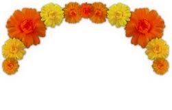 Beira dos Marigolds Fotografia de Stock Royalty Free