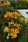 Beira dos Perennials fotografia de stock