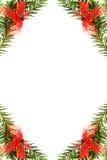 Beira festiva do Natal com árvore de pinho Imagem de Stock Royalty Free