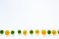 Beira floral colorida Imagens de Stock