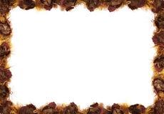 Beira floral da queda Fotografia de Stock