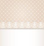 Beira floral do laço Imagens de Stock