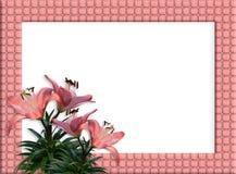 Beira floral lírios tecidos da cor-de-rosa do frame Imagem de Stock