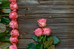 Beira lateral de rosas cor-de-rosa frescas bonitas Imagens de Stock