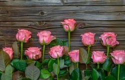 Beira lateral de rosas cor-de-rosa frescas bonitas Imagem de Stock