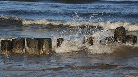 Beira-mar Báltico e disjuntor de onda de madeira fotos de stock royalty free