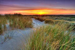 Beira-mar com as dunas de areia no por do sol foto de stock royalty free