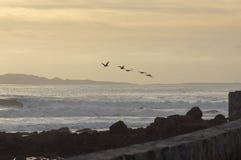 Beira-mar de Ensenada México Foto de Stock