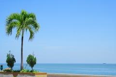 Beira-mar de Malaysia fotos de stock royalty free