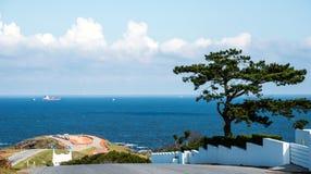 Beira-mar de Punta Ballena em Punta del Este, Uruguai Fotografia de Stock