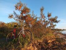 Beira-mar do outono Foto de Stock Royalty Free