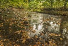 Beira-rio em Daisy Nook Country Park perto de Oldham imagens de stock royalty free