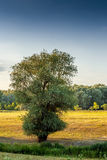 Beira-rio em Hungria Fotos de Stock
