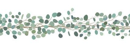A beira sem emenda de um eucalipto ramifica Frame floral Ilustração desenhada mão do vetor Fundo branco fotografia de stock royalty free