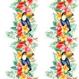Beira sem emenda tropical da repetição com flores coloridos Imagens de Stock Royalty Free