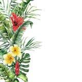 Beira tropical da aquarela com folhas e as flores exóticas Quadro pintado à mão com folhas de palmeira, ramos, monstera ilustração royalty free