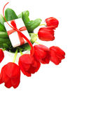 Beira vermelha das tulipas Fotos de Stock Royalty Free