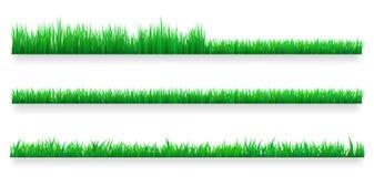 Beiras da grama verde ajustadas Conceito do cuidado do gramado Ilustração isolada do vetor ilustração stock