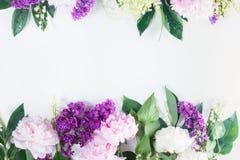 Beiras florais Fotos de Stock