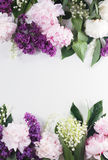 Beiras florais Foto de Stock Royalty Free