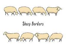 Beiras tiradas mão dos carneiros Fotografia de Stock