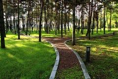 Beishan offentlig trädgård i morgonljuset Arkivbilder
