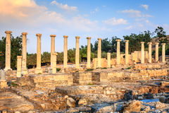 Beit She'an Royalty Free Stock Photos