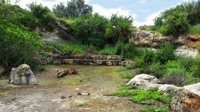 Beit Guvrin fotografia royalty free